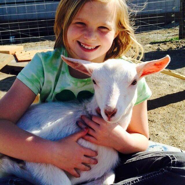 2015 IDGA Share-A-Kid Winner Ellie Karr (donor, Virden Creek Saanens)